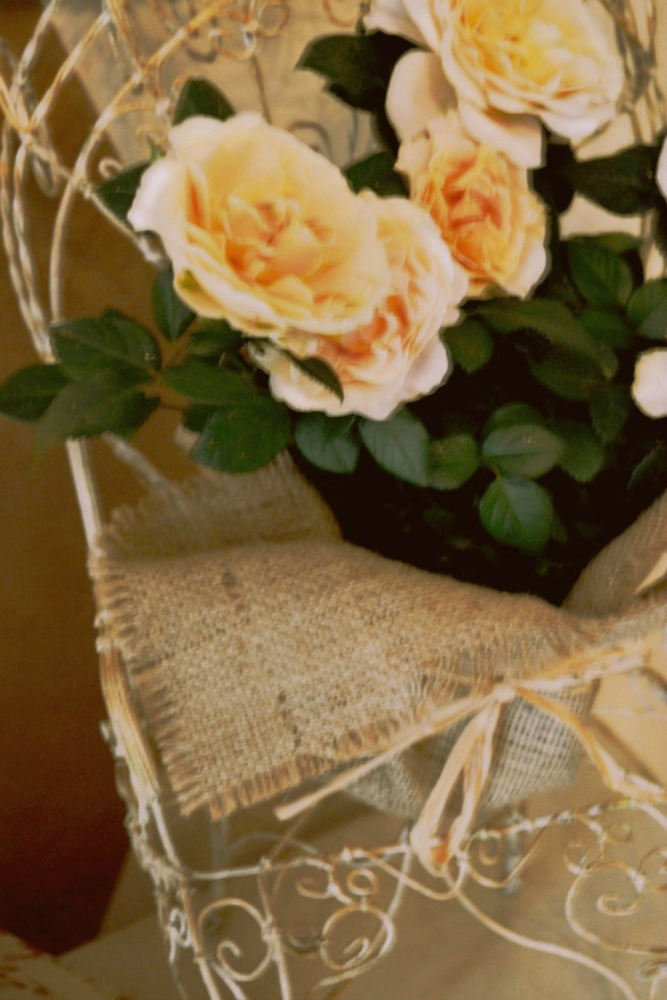 closeup of roses in burlap on entry table