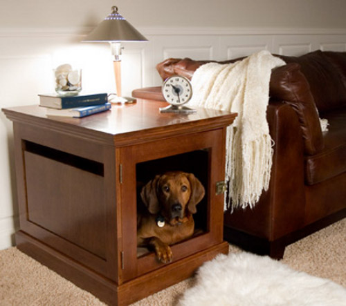 little indoor dog house