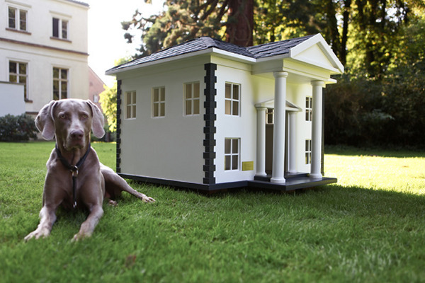 beautiful dog house