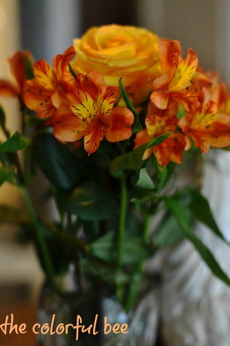 orange flowers on a kitchen island