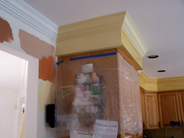 a before picture of a kitchen before a color consultation